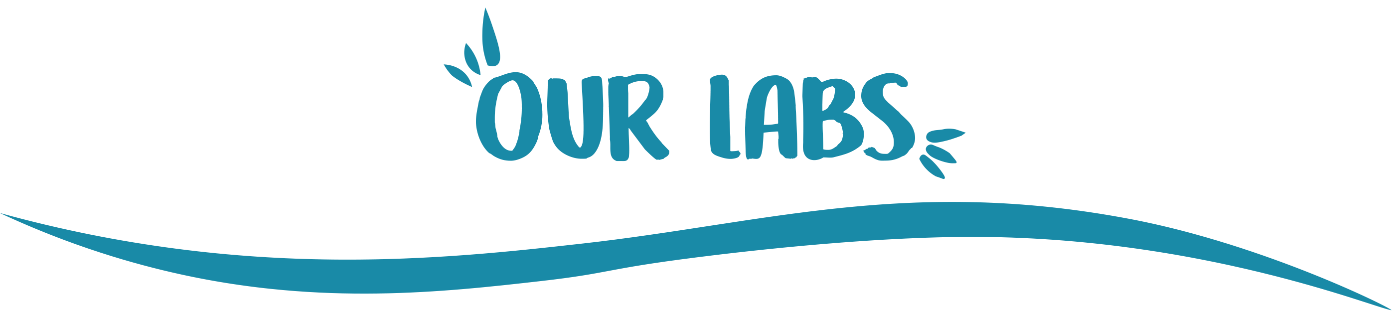 our labs wave title